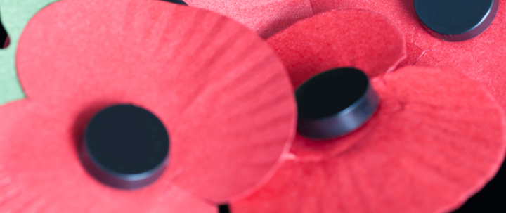 Poppy Day