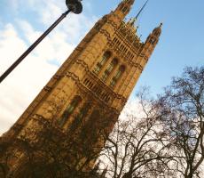 Parliament. Photo: Tom Bream