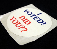 Vote badge. Photo: Race Bannon
