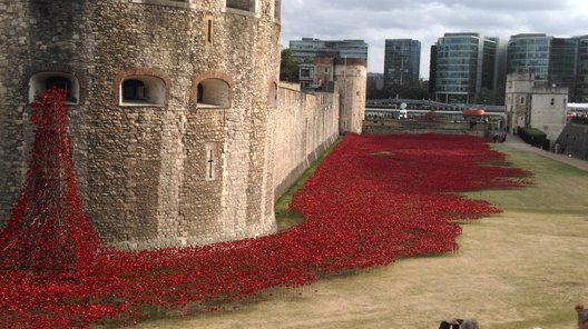 Less than a quarter of the 888,246 ceramic poppies are still to be planted.