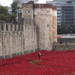 Poppy Moat Aug 2014